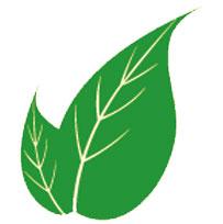 psaya-karşı-yararlı-gelen-bitkiler